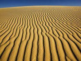 desertshadows.jpg